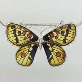 broche mariposa 12